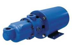 Detroit Pump Products Progressive Cavity Pumps