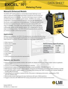 LMI Excel XR chemical metering pump brochure Detroit Pump pdf