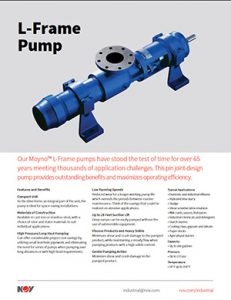 L-Frame Pump nov moyno Detroit Pump